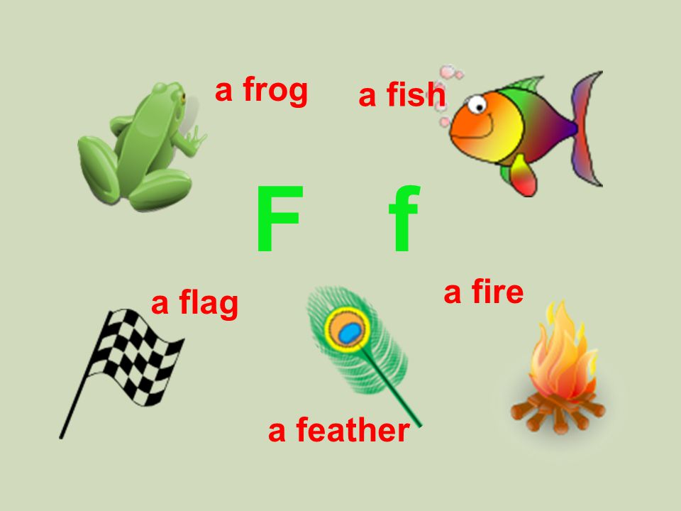 F f a fish a flag a feather a fire a frog