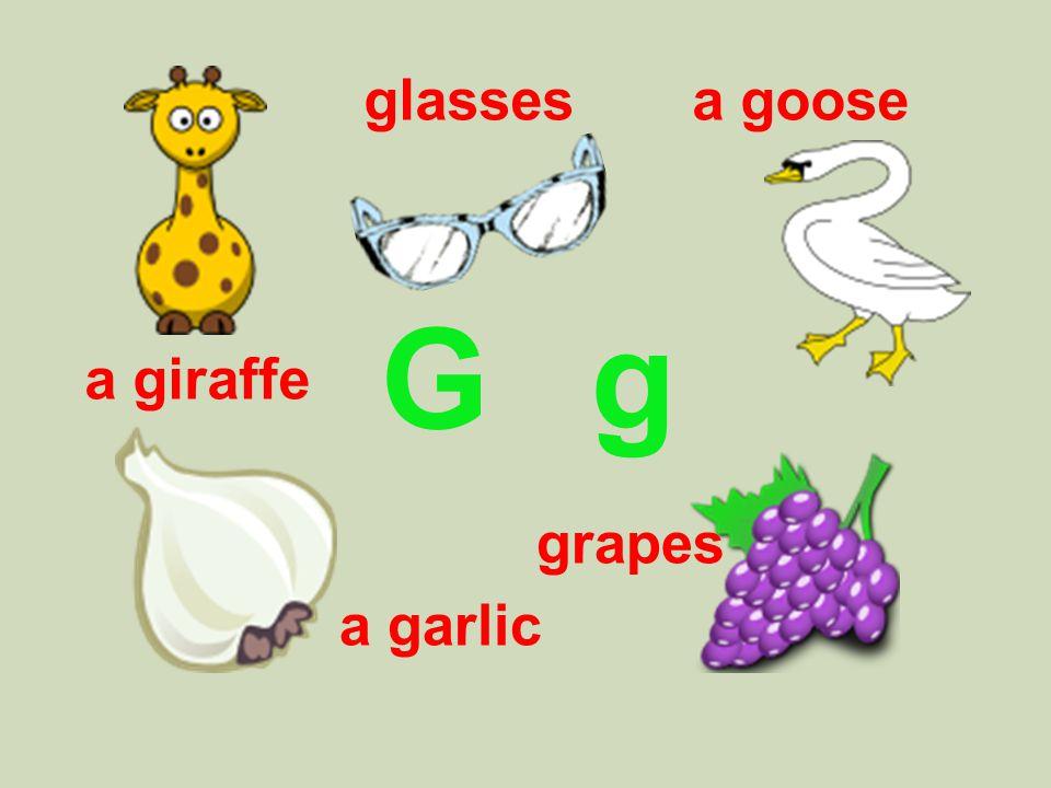 G g glassesa goose grapes a giraffe a garlic