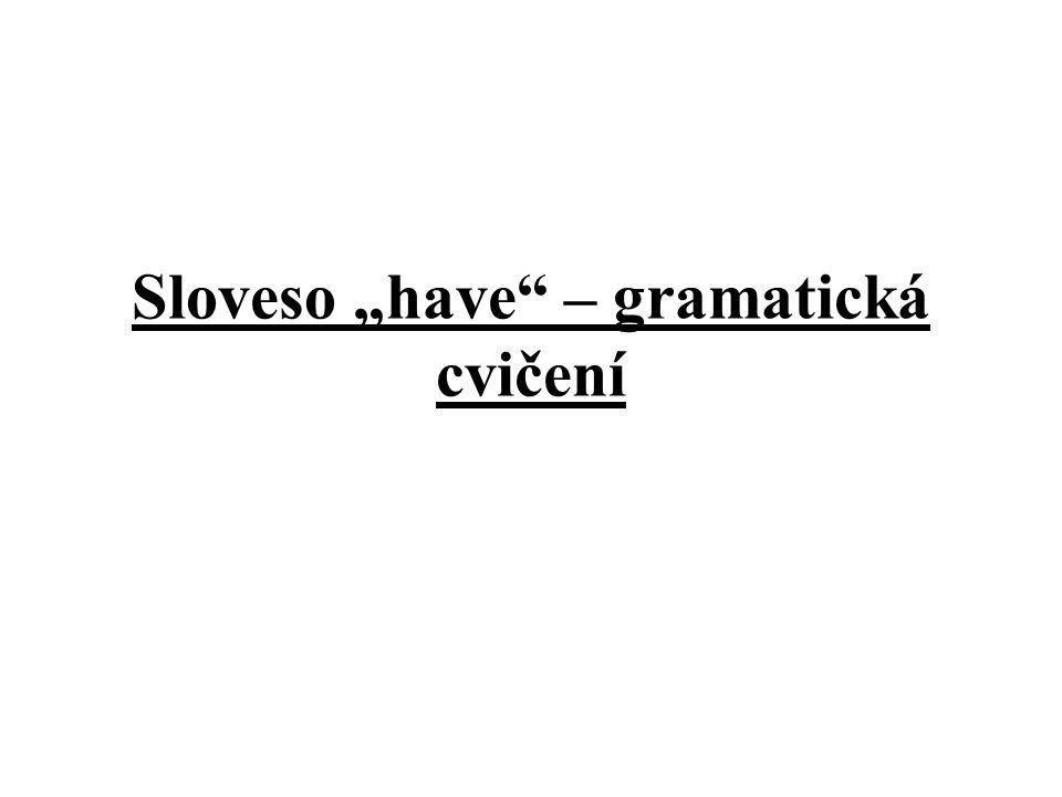 """Sloveso """"have"""" – gramatická cvičení"""
