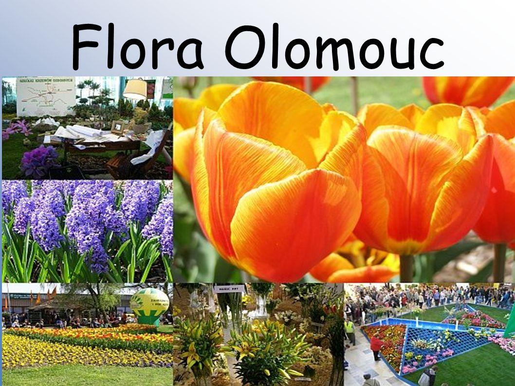 ● Flora Olomouc je mezinárodní zahradnická výstava, kterou v Olomouci každoročně pořádá společnost Výstaviště Flora Olomouc.