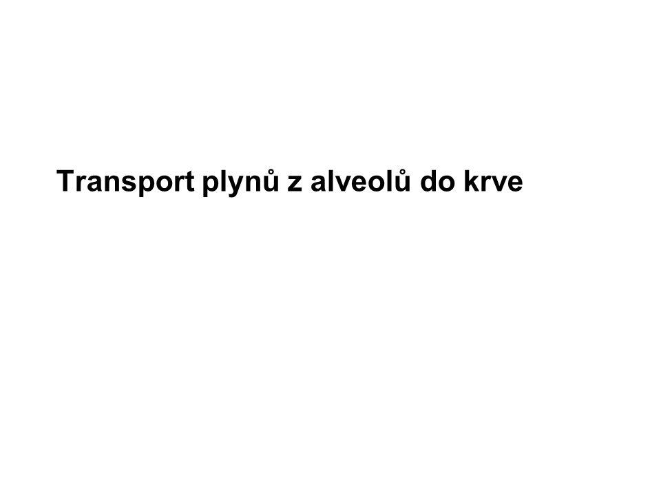Transport plynů z alveolů do krve