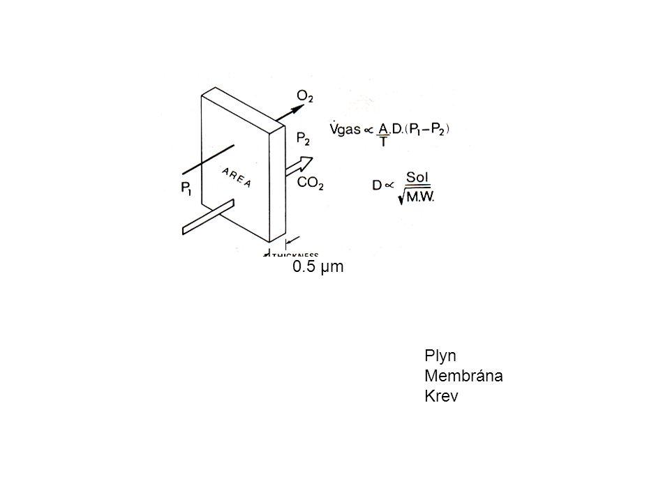 Plyn Membrána Krev 0.5 μm