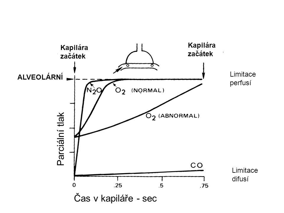 Kapilára začátek Parciální tlak Čas v kapiláře - sec ALVEOLÁRNÍ Limitace perfusí Limitace difusí
