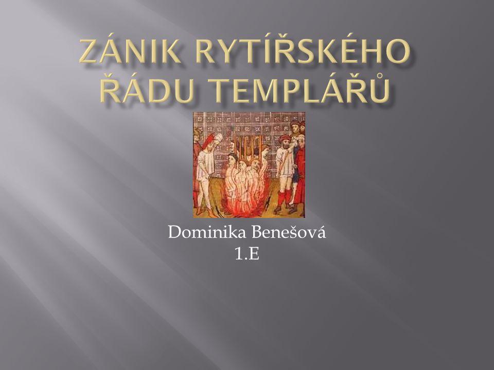 Dominika Benešová 1.E