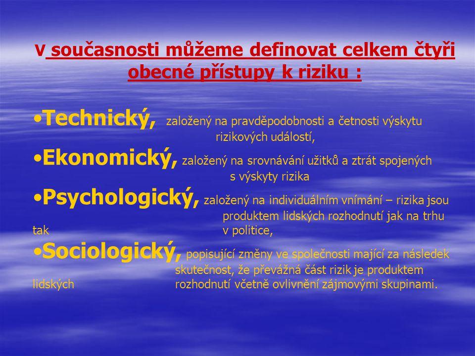 V současnosti můžeme definovat celkem čtyři obecné přístupy k riziku : Technický, založený na pravděpodobnosti a četnosti výskytu rizikových událostí, Ekonomický, založený na srovnávání užitků a ztrát spojených s výskyty rizika Psychologický, založený na individuálním vnímání – rizika jsou produktem lidských rozhodnutí jak na trhu tak v politice, Sociologický, popisující změny ve společnosti mající za následek skutečnost, že převážná část rizik je produktem lidských rozhodnutí včetně ovlivnění zájmovými skupinami.