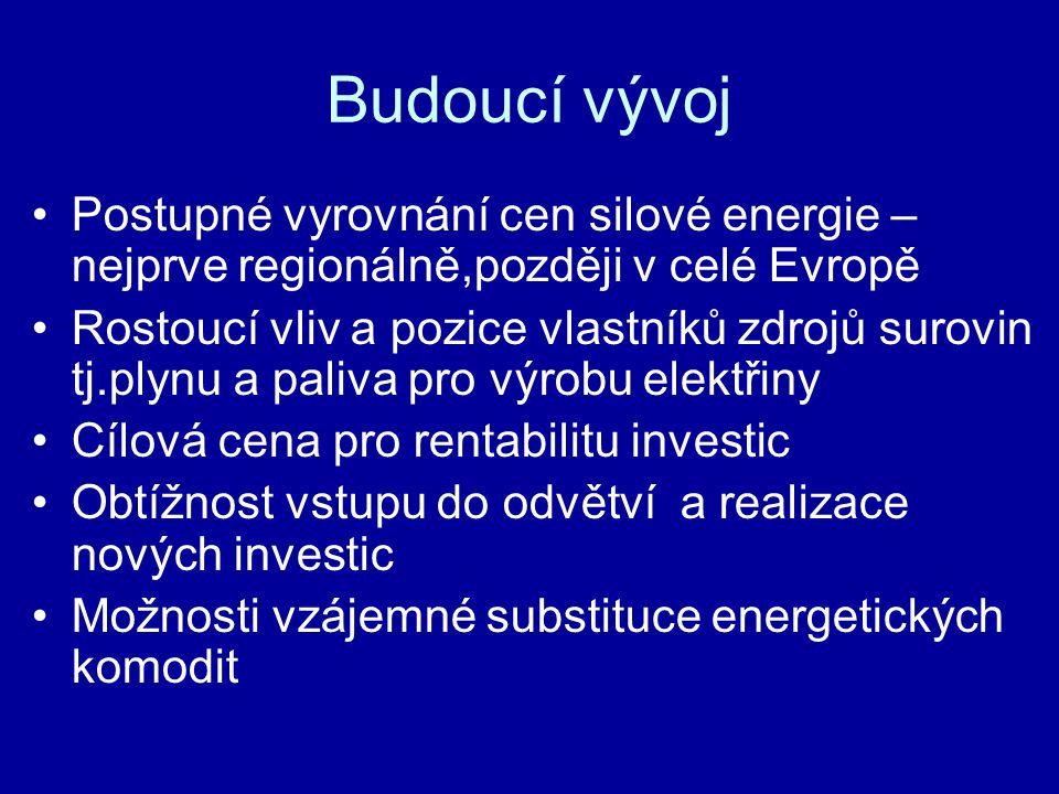 Budoucí vývoj Postupné vyrovnání cen silové energie – nejprve regionálně,později v celé Evropě Rostoucí vliv a pozice vlastníků zdrojů surovin tj.plynu a paliva pro výrobu elektřiny Cílová cena pro rentabilitu investic Obtížnost vstupu do odvětví a realizace nových investic Možnosti vzájemné substituce energetických komodit