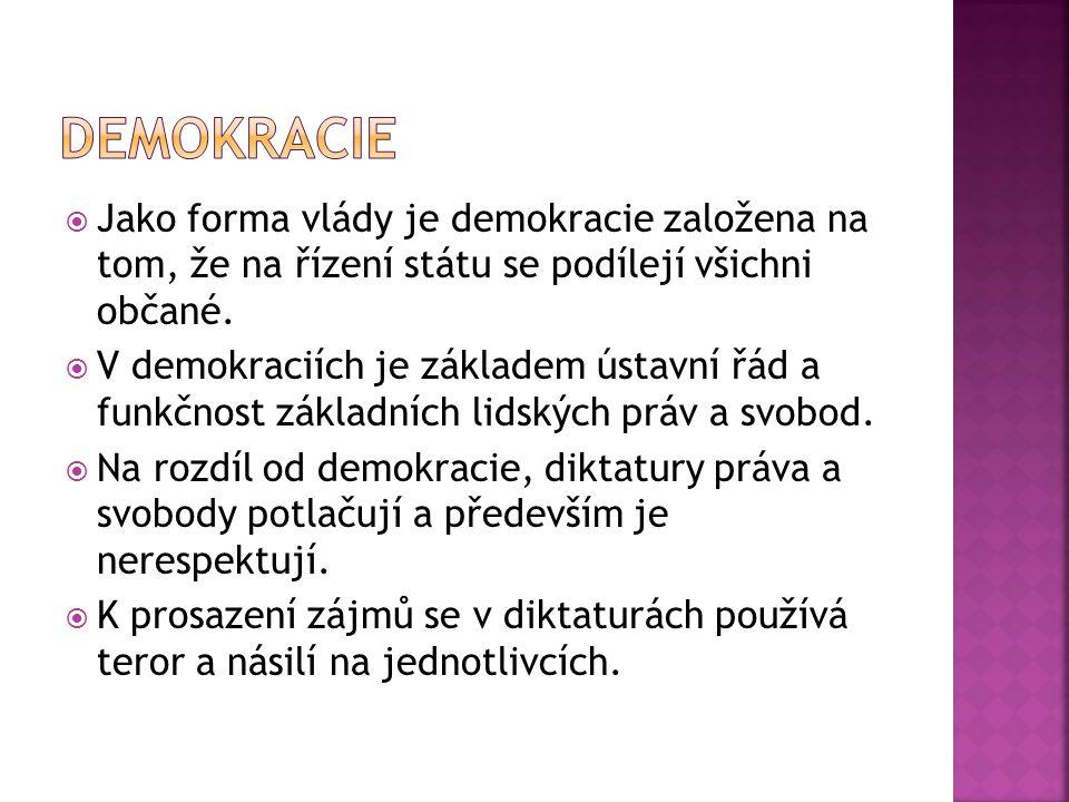  Česká republika je příkladem zastupitelské demokracie.
