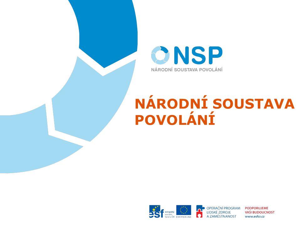 Národní soustava povolání (NSP) je otevřená soustavně aktualizovaná databáze informací o potřebách trhu práce, vytvářená zaměstnavateli a garantovaná státem obsahuje informace o povoláních uplatnitelných na trhu práce a kompetencích požadovaných pro jejich výkon, které jsou plně využitelné v podnikové praxi, poradenských službách a při ovlivňování odborného vzdělávání 2