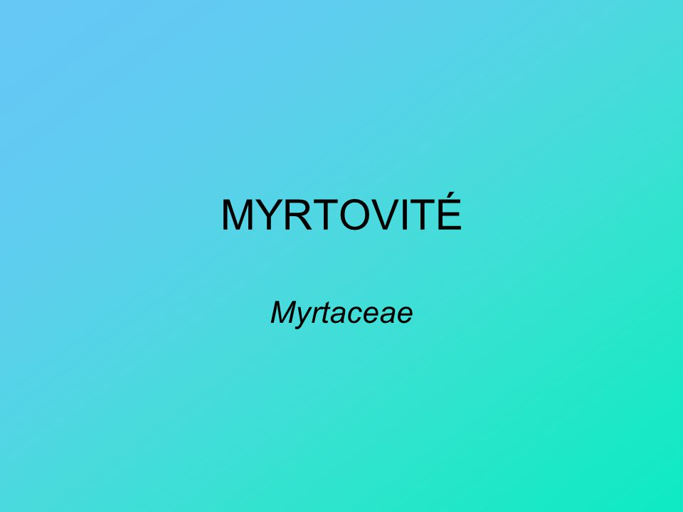 MYRTOVITÉ Myrtaceae