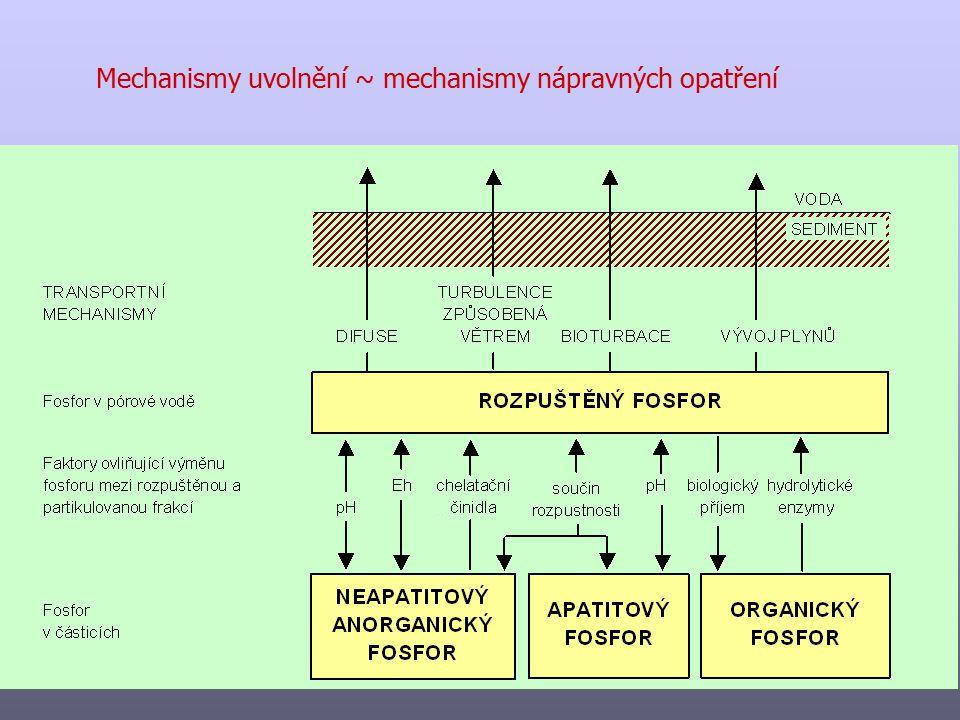 Mechanismy uvolnění ~ mechanismy nápravných opatření