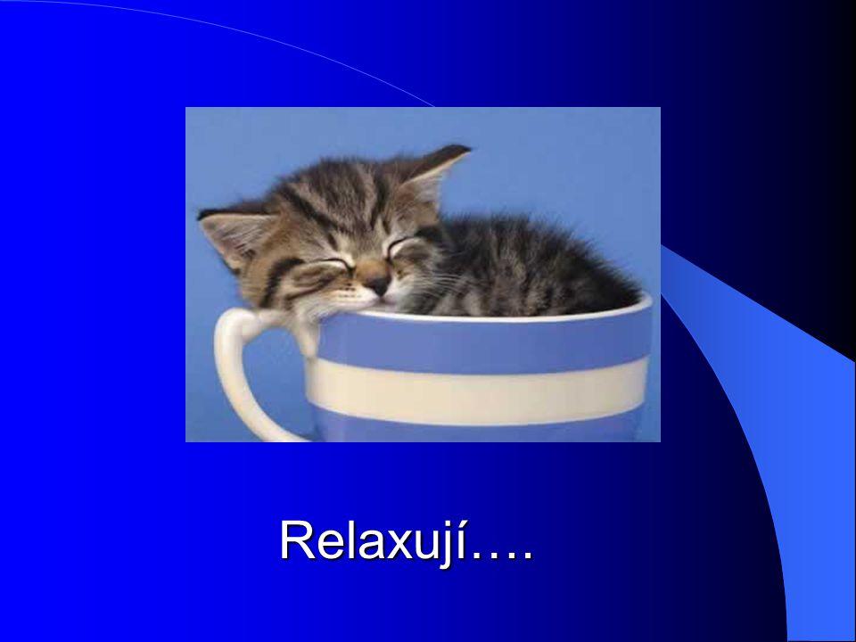 Relaxují….