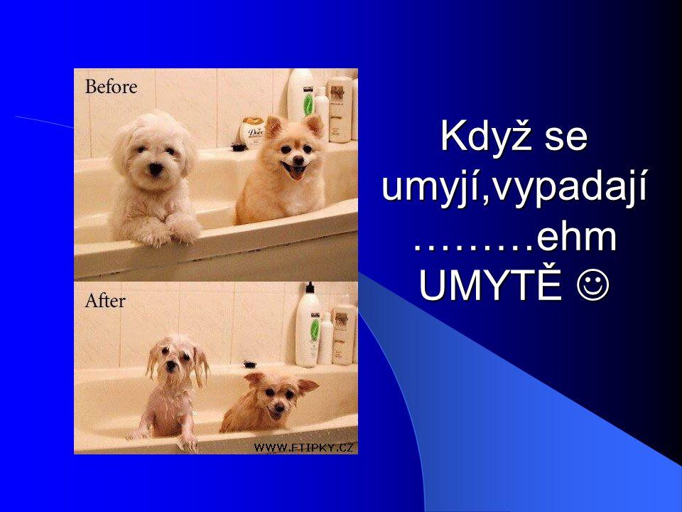Když se umyjí,vypadají ………ehm UMYTĚ Když se umyjí,vypadají ………ehm UMYTĚ