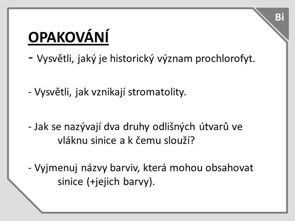 OPAKOVÁNÍ - Vysvětli, jaký je historický význam prochlorofyt.