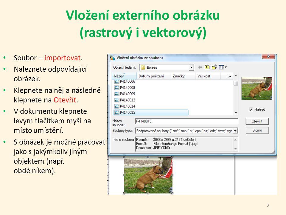 Vložení externího obrázku (rastrový i vektorový) Soubor – importovat.