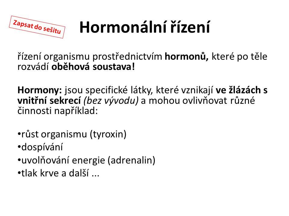 Hormonální řízení řízení organismu prostřednictvím hormonů, které po těle rozvádí oběhová soustava! Hormony: jsou specifické látky, které vznikají ve