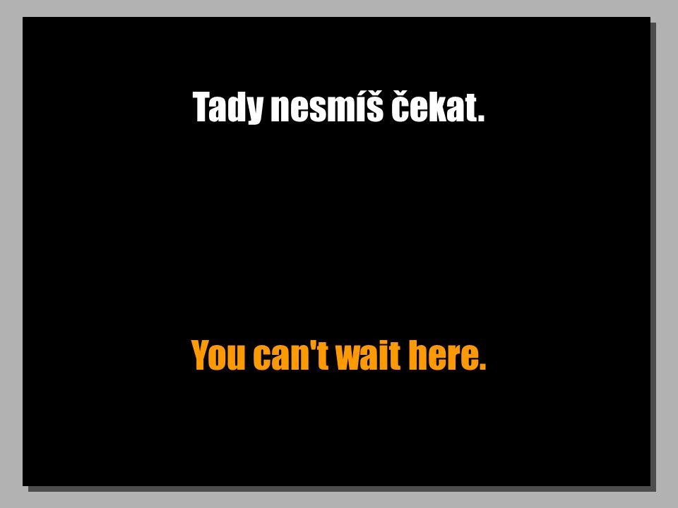 Tady nesmíš čekat. You can t wait here.