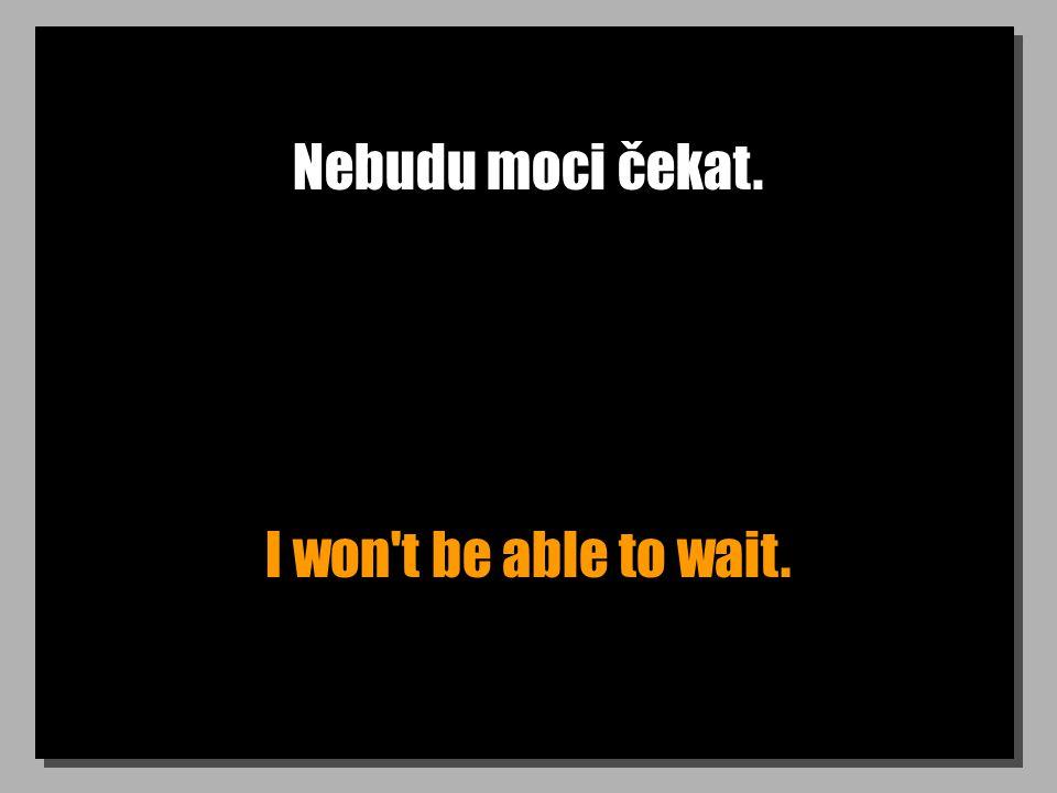 Nebudu moci čekat. I won t be able to wait.