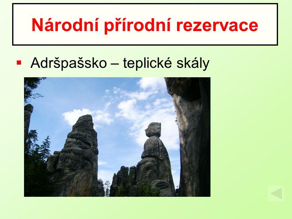  Adršpašsko – teplické skály Národní přírodní rezervace