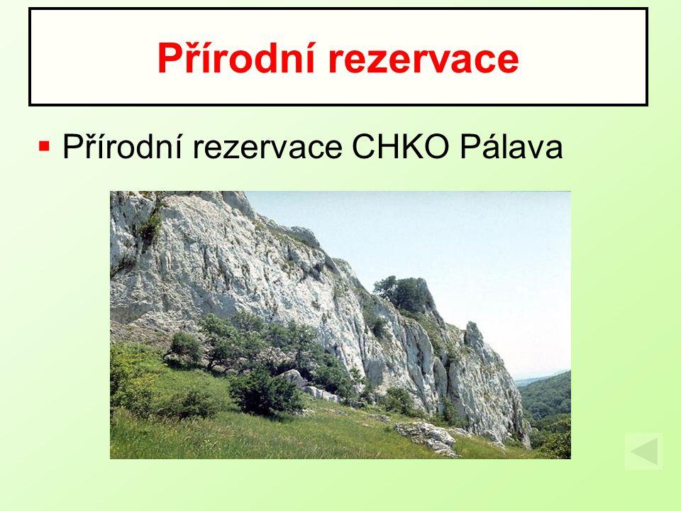  Přírodní rezervace CHKO Pálava Přírodní rezervace