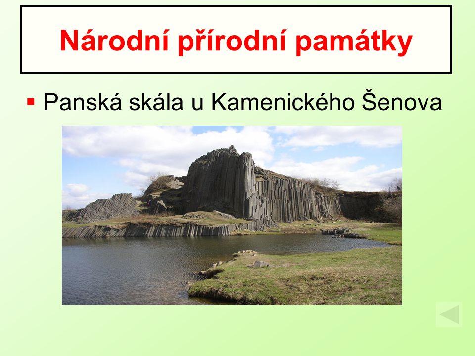  Panská skála u Kamenického Šenova Národní přírodní památky