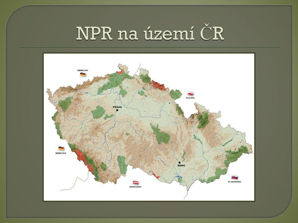  Národní p ř írodní památka je území obvykle menší rozlohy z ř ízené k ochran ě ur č itých p ř írodních objekt ů národní a ž nadnárodní hodnoty.