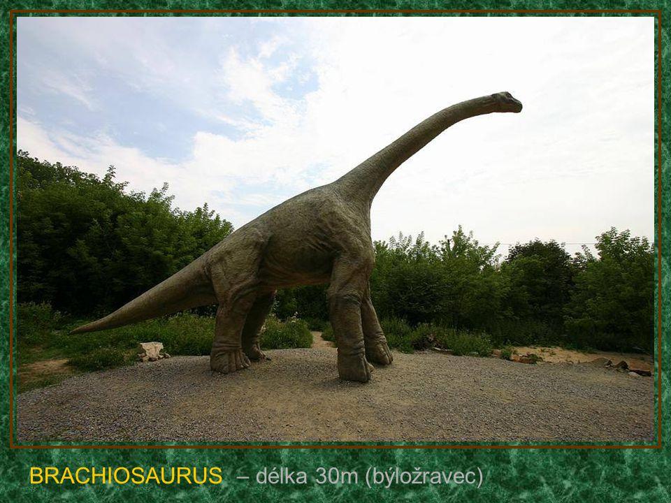 DEINONYCHUS – délka 5m (tipni si :-)
