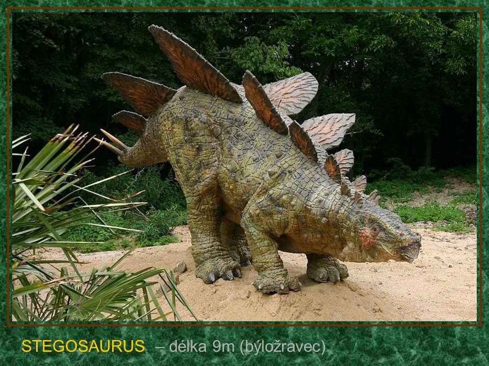 BRACHIOSAURUS – délka 30m (býložravec)