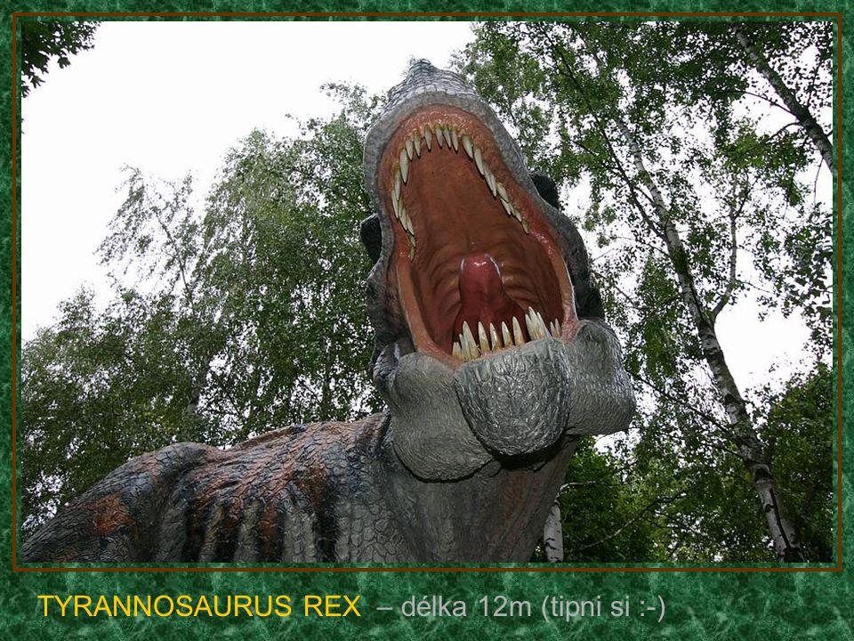 STEGOSAURUS – délka 9m (býložravec)