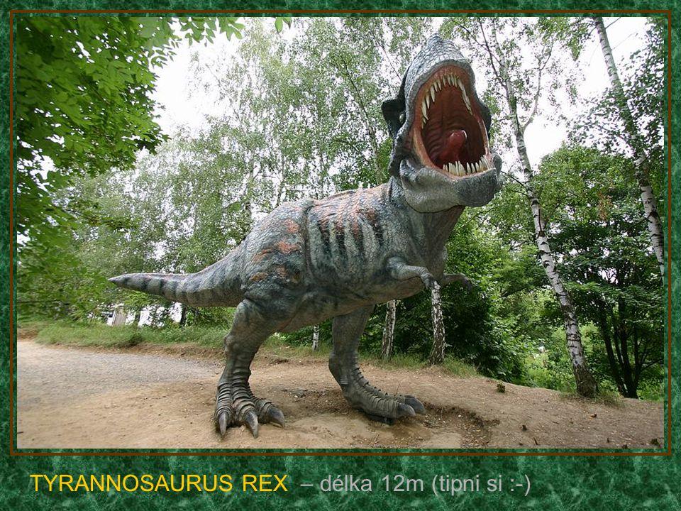 TYRANNOSAURUS REX – délka 12m (tipni si :-)