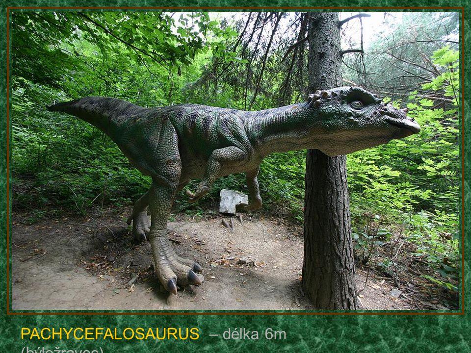 TYRANNOSAURUS REX – délka 12m (žere lidi)