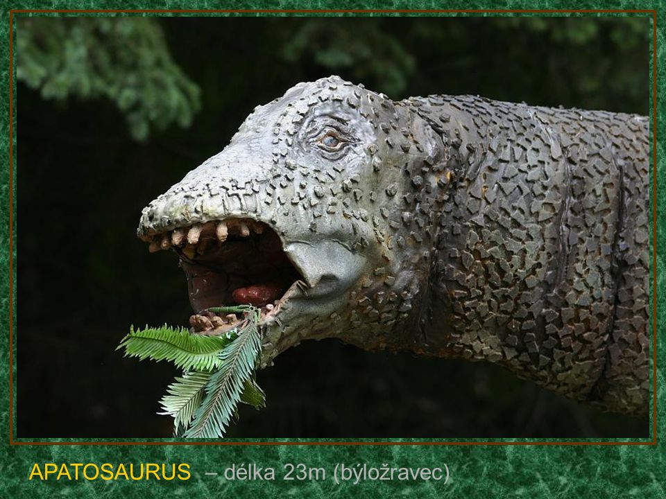 DIPLODOCUS – délka 26m (býložravec)