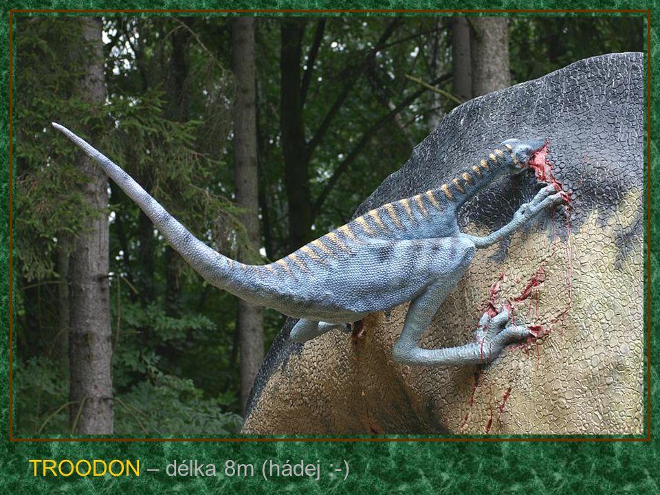 PARASAULOLPHUS s mládětem – délka 8m (býložravec)