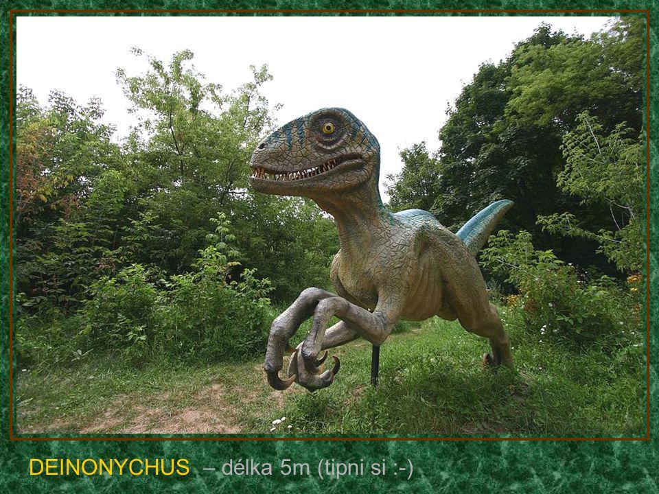 ANKYLOSAURUS – délka 9m (býložravec)