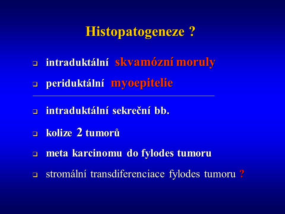 Histopatogeneze .