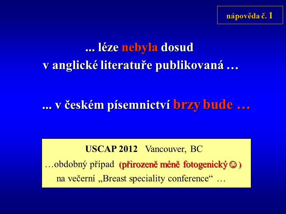 ...léze nebyla dosud v anglické literatuře publikovaná …...
