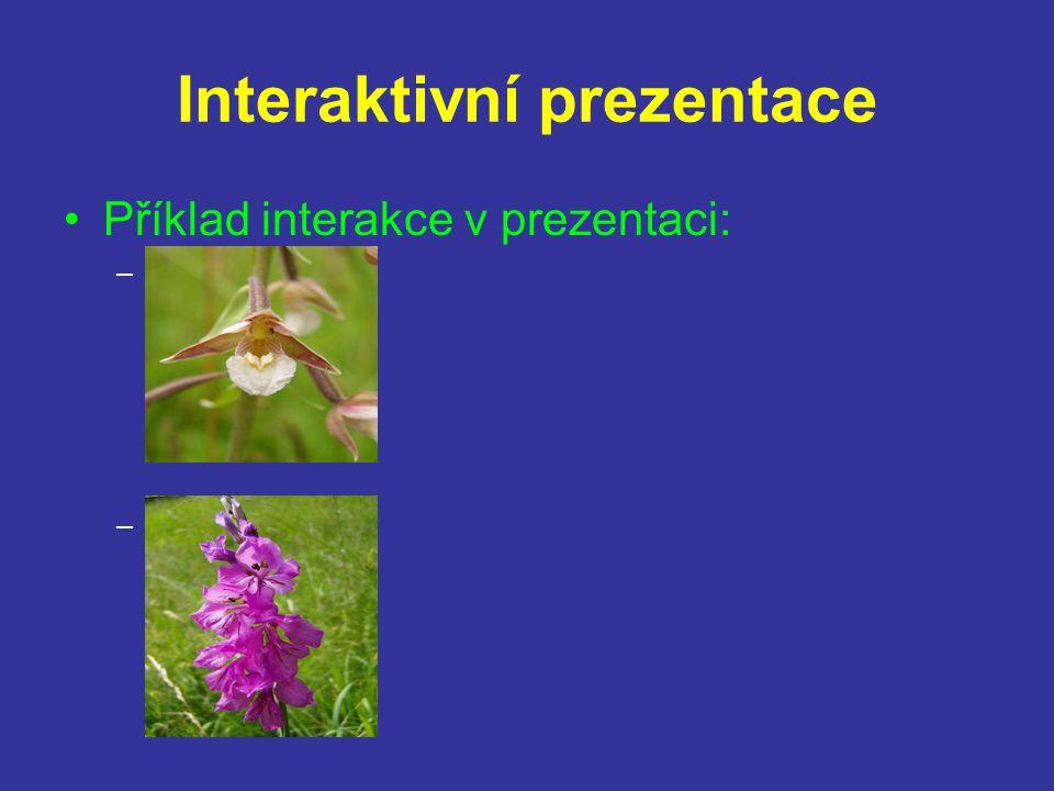 Interaktivní prezentace Interaktivní prezentace – prezentace která obsahuje určité prvky, které umožňují bezprostřední interakci mezi přednášejícím a vlastní prezentací.