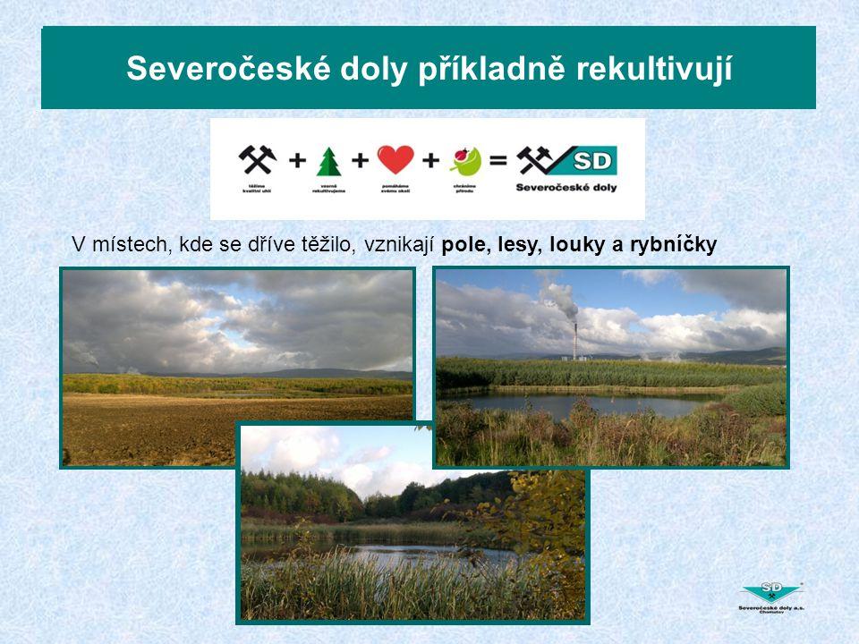 Severočeské doly vzorně rekultivují Severočeské doly příkladně rekultivují V místech, kde se dříve těžilo, vznikají pole, lesy, louky a rybníčky