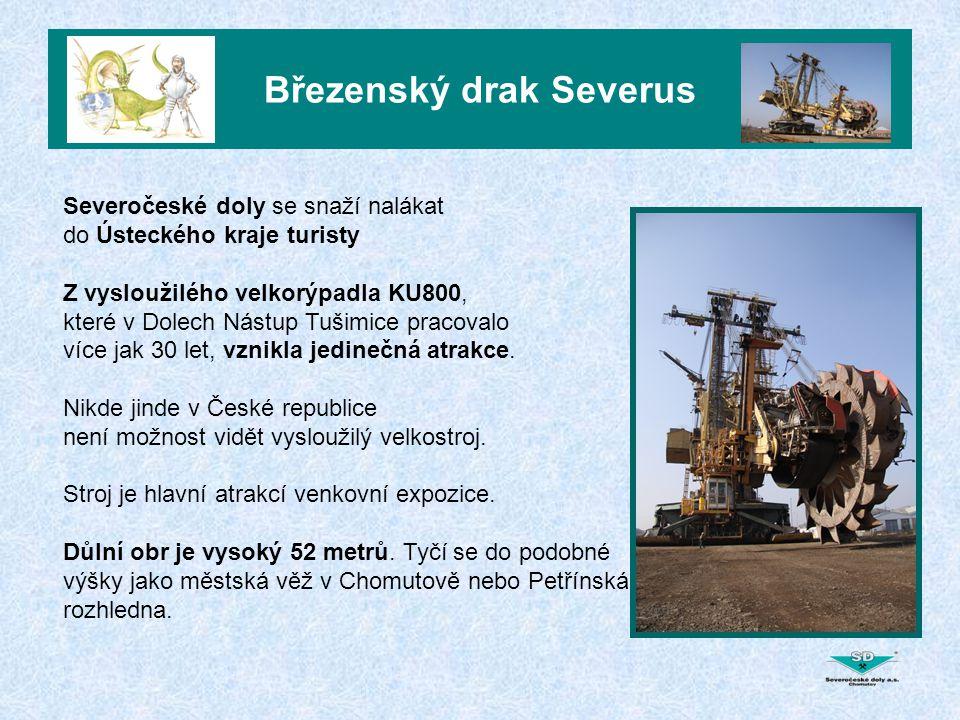 Březenský drak Severus Březenský drak se stal atrakcí nejen pro odbornou veřejnost, ale hlavně pro rodiny s dětmi.