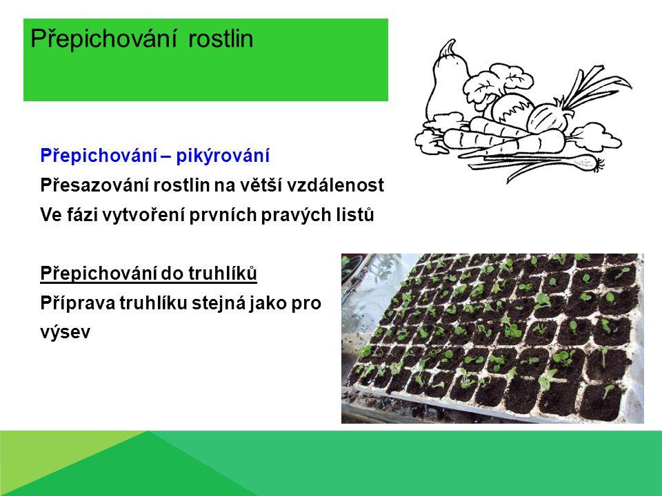 Přepichování rostlin Přepichování – pikýrování Přesazování rostlin na větší vzdálenost Ve fázi vytvoření prvních pravých listů Přepichování do truhlíků Příprava truhlíku stejná jako pro výsev