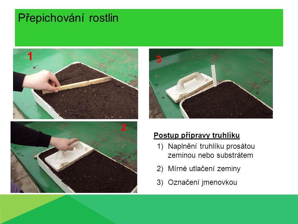 Přepichování rostlin 1 2 3 Postup přípravy truhlíku 1)Naplnění truhlíku prosátou zeminou nebo substrátem 2)Mírné utlačení zeminy 3)Označení jmenovkou