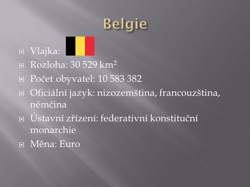  Vlajka:  Rozloha: 30 529 km 2  Počet obyvatel: 10 583 382  Oficiální jazyk: nizozemština, francouzština, němčina  Ústavní zřízení: federativní konstituční monarchie  Měna: Euro