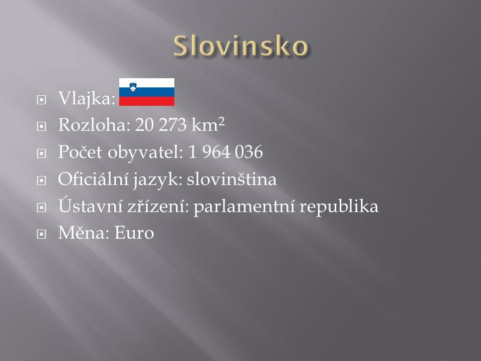  Vlajka:  Rozloha: 20 273 km 2  Počet obyvatel: 1 964 036  Oficiální jazyk: slovinština  Ústavní zřízení: parlamentní republika  Měna: Euro
