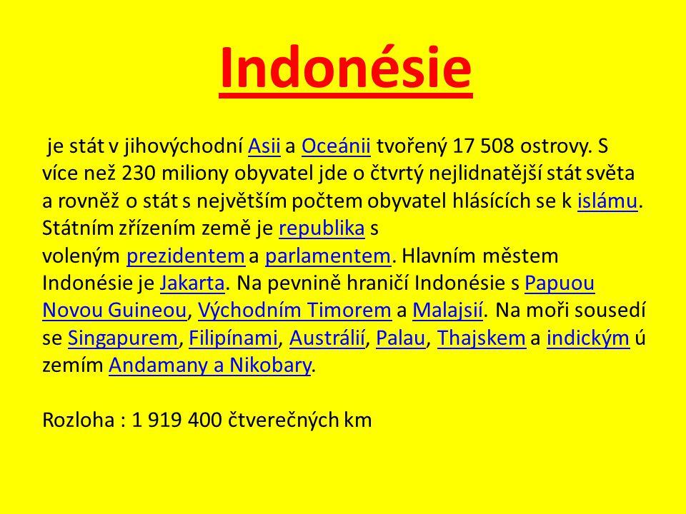 Indonésie je stát v jihovýchodní Asii a Oceánii tvořený 17 508 ostrovy. S více než 230 miliony obyvatel jde o čtvrtý nejlidnatější stát světa a rovněž
