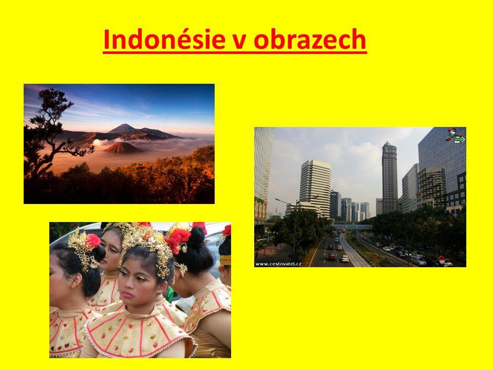 Otázky a úkoly : 1.Na kterých hlavních ostrovech se nachází Indonésie.