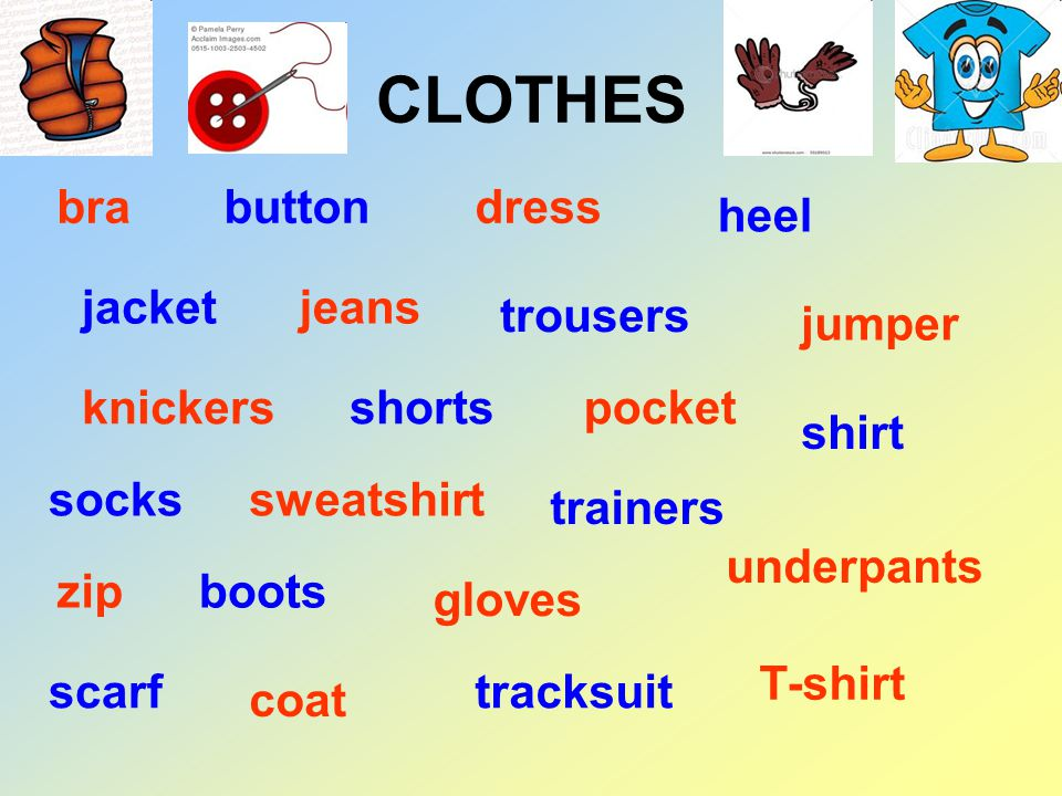 CLOTHES brabuttondress heel jacketjeans trousers jumper knickersshortspocket shirt sockssweatshirt trainers underpants zipboots gloves scarf coat tracksuit T-shirt