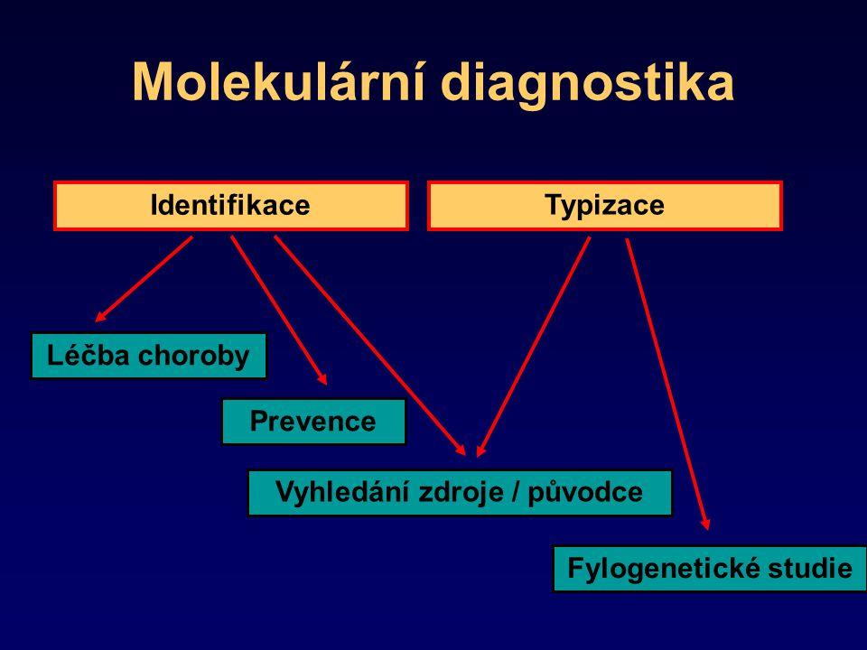 Molekulární diagnostika Typizace Léčba choroby Prevence Vyhledání zdroje / původce Identifikace Fylogenetické studie