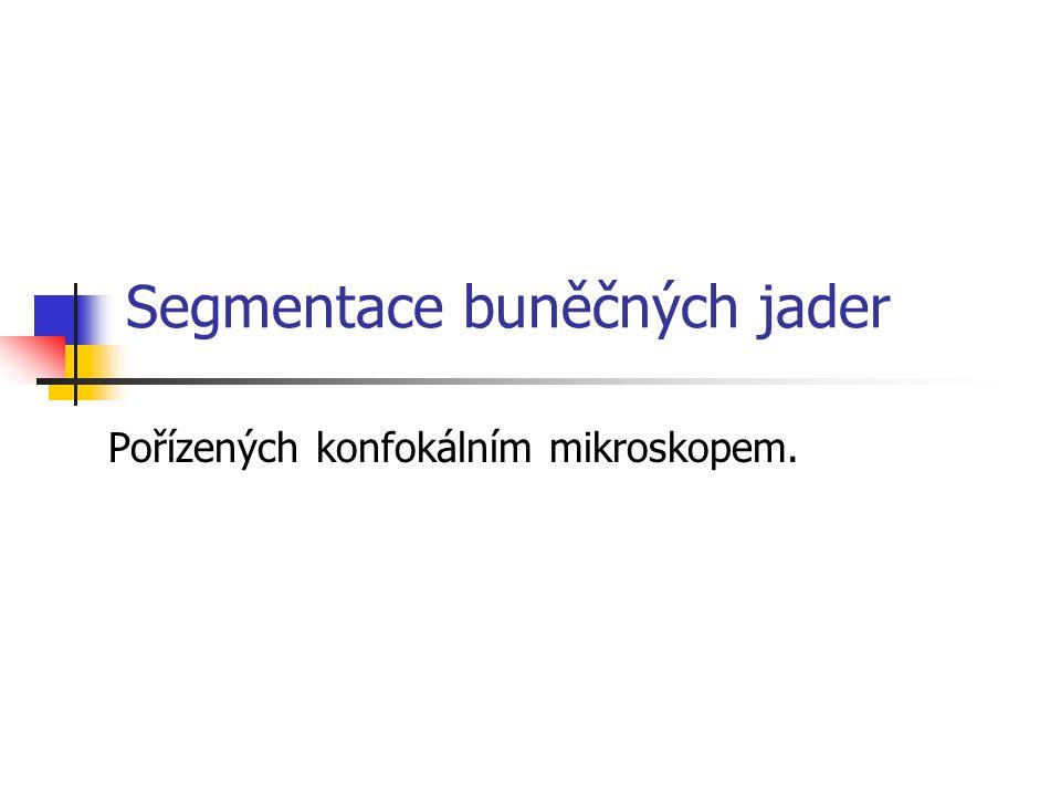 Implementace IRIX C++ LAPACK Motif OpenGL