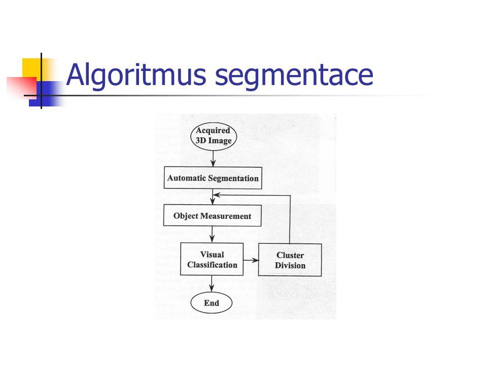 Algoritmus segmentace
