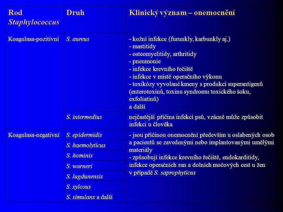 Rod Staphylococcus DruhKlinický význam – onemocnění Koagulasa-pozitivníS. aureus- kožní infekce (furunkly, karbunkly aj.) - mastitidy - osteomyelitidy