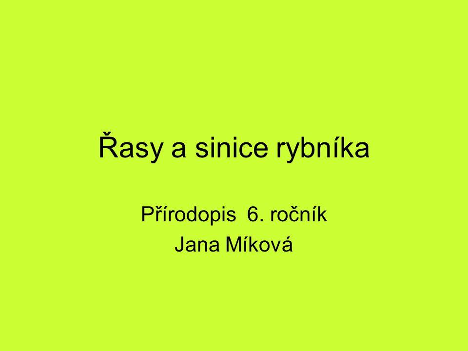 Řasy a sinice rybníka Přírodopis 6. ročník Jana Míková